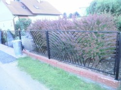 Kovaný plot žabeň